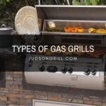 Types of Grills : How to Choose the Best Grill For You